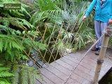 Bamboe harmonica trellis 180 x 180 cm [pallet]_
