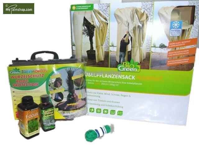 Aktiepakket winterbescherming voor palmen XXL