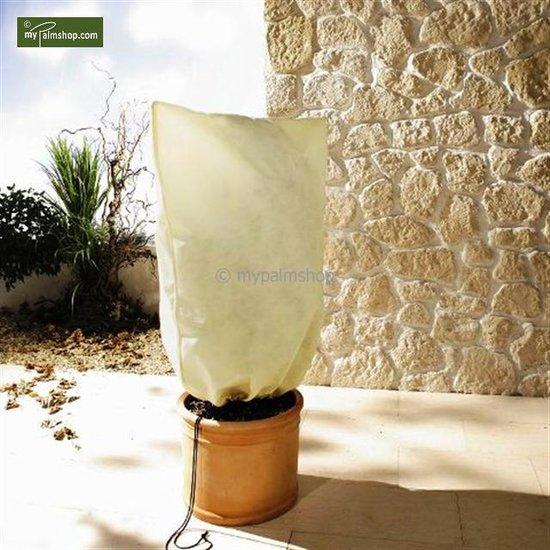 Winterbescherming voor planten vierkant 180 x 120 cm XXL