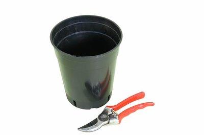 Diepe Ronde Palmpot 3.0 liter